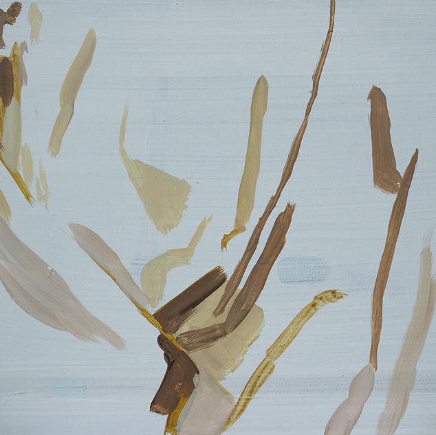 Curtain (Bathroom) 4 2011