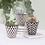 Thumbnail: Set of 3 mini geo planters