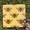 Thumbnail: Glass Bee Coasters