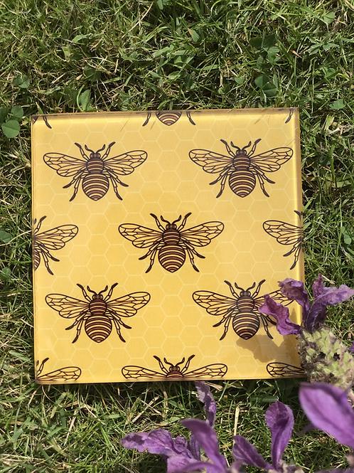 Glass Bee Coasters