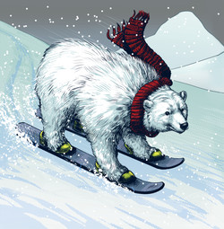 Polar Bear Ski