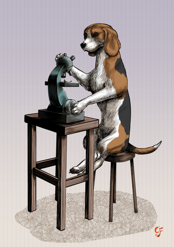 Beagle Scientist