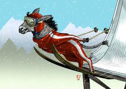 Donkey Ski jumper