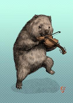 Wombat violinist