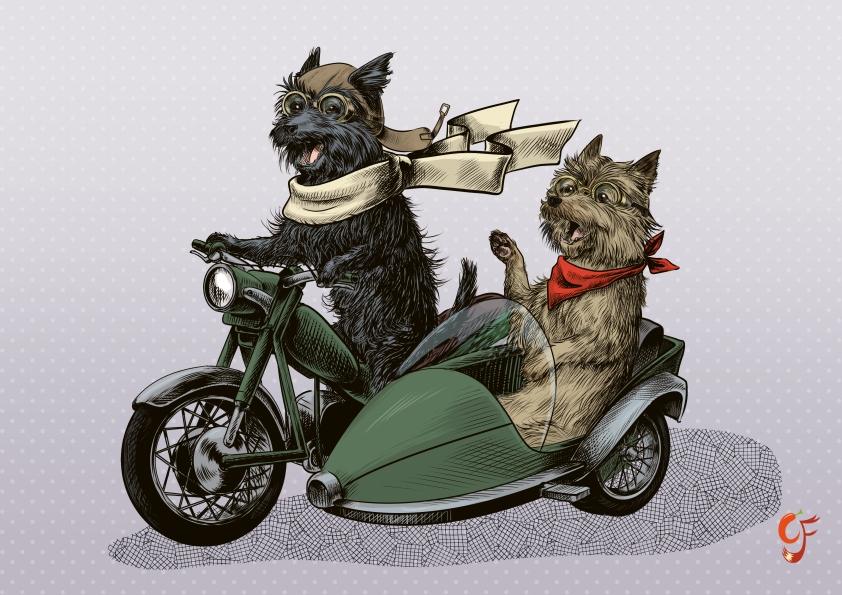 Cairn Terrier Motorbike