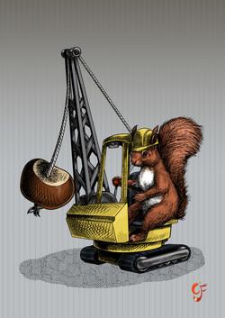 Conker Bonker Squirrel