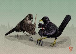 Blackbird Gardeners