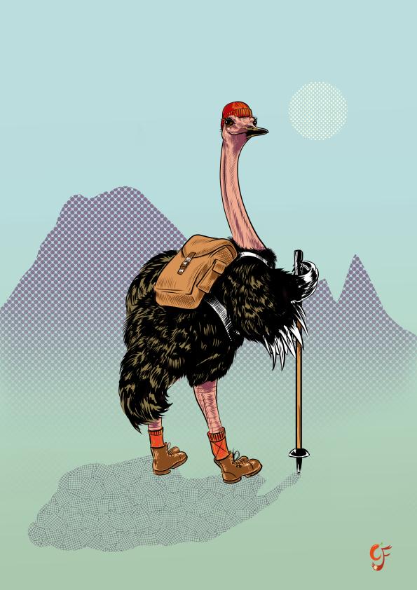 Ostrich Hiker