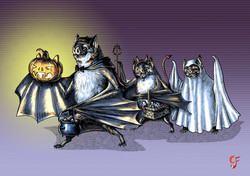 Vampire Bat Trick or Treat