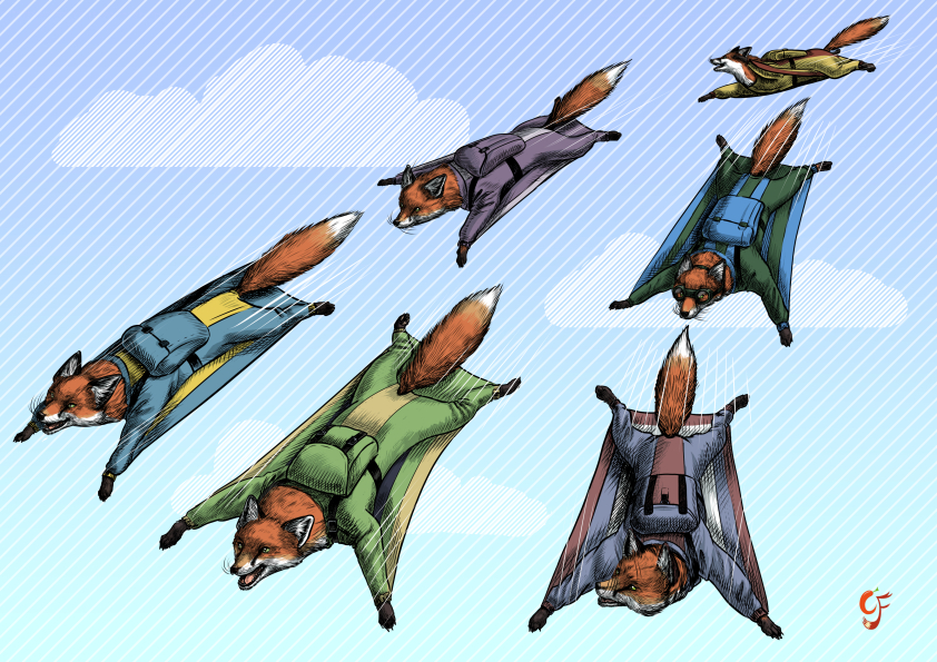 Flying Fox Formation Team