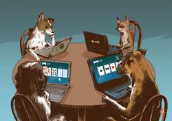 Dog Poker