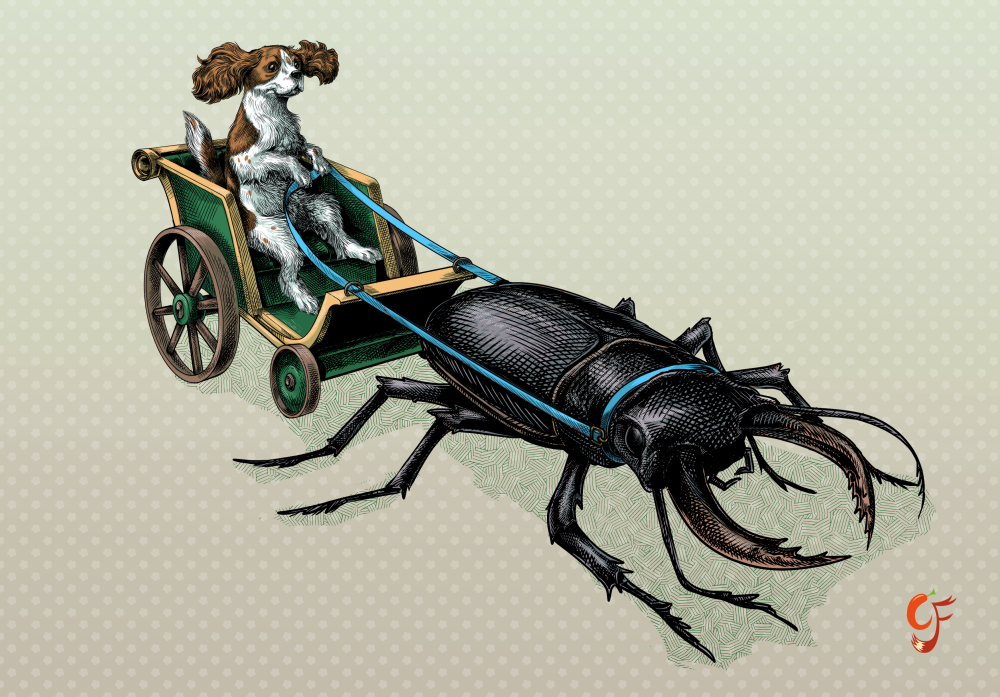 King Charles Cavalier and Stag Beetle