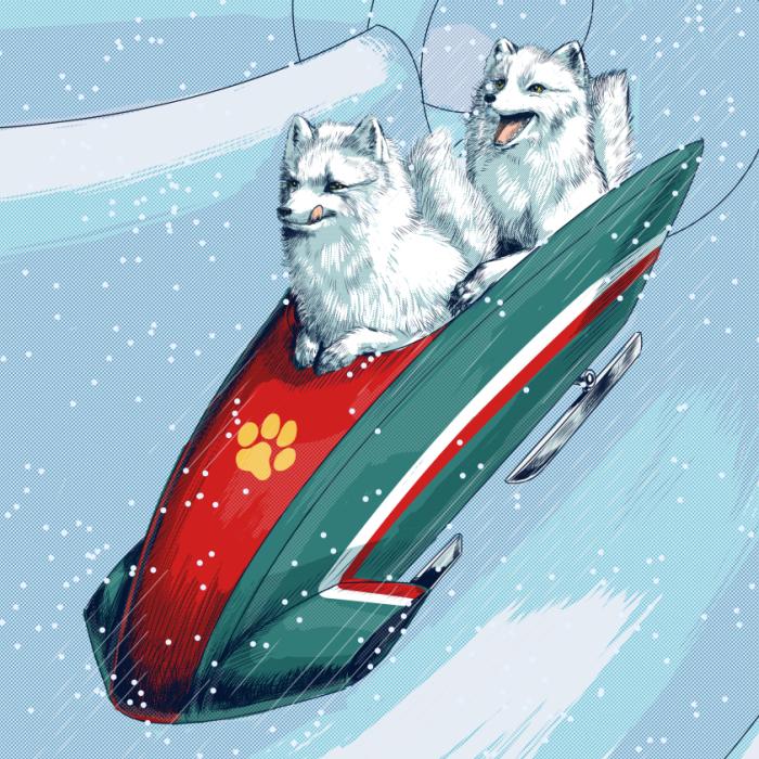 Arctic Fox Toboggan