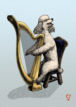 Poodle Harpist
