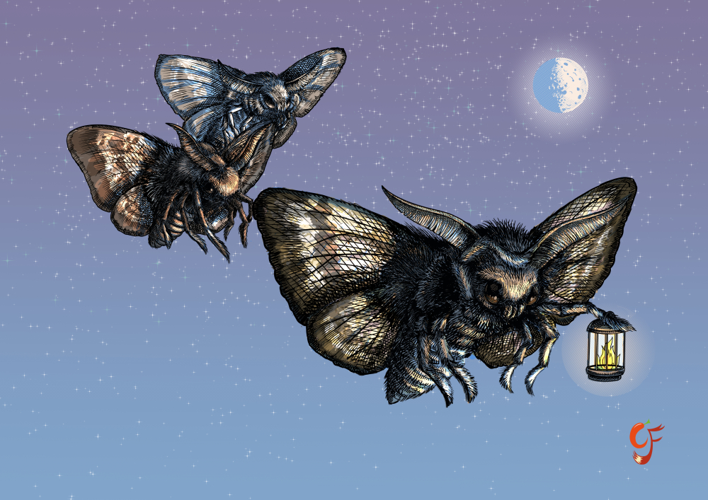 Moths navigation