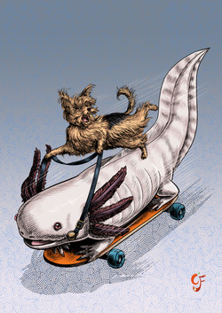 Yorkie and Axolotl Skateboarders