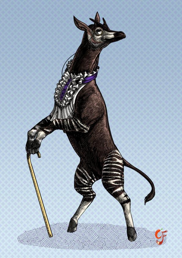 Okapi Gentleman