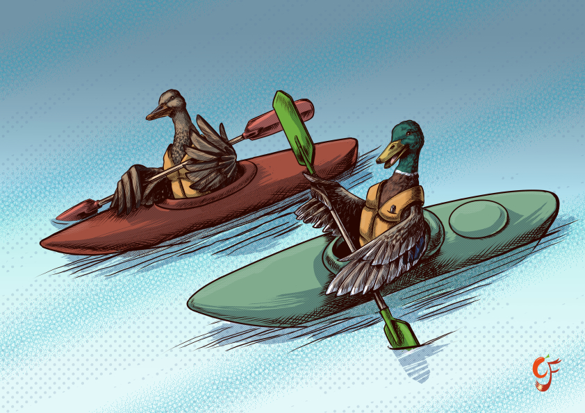 Duck Kayak