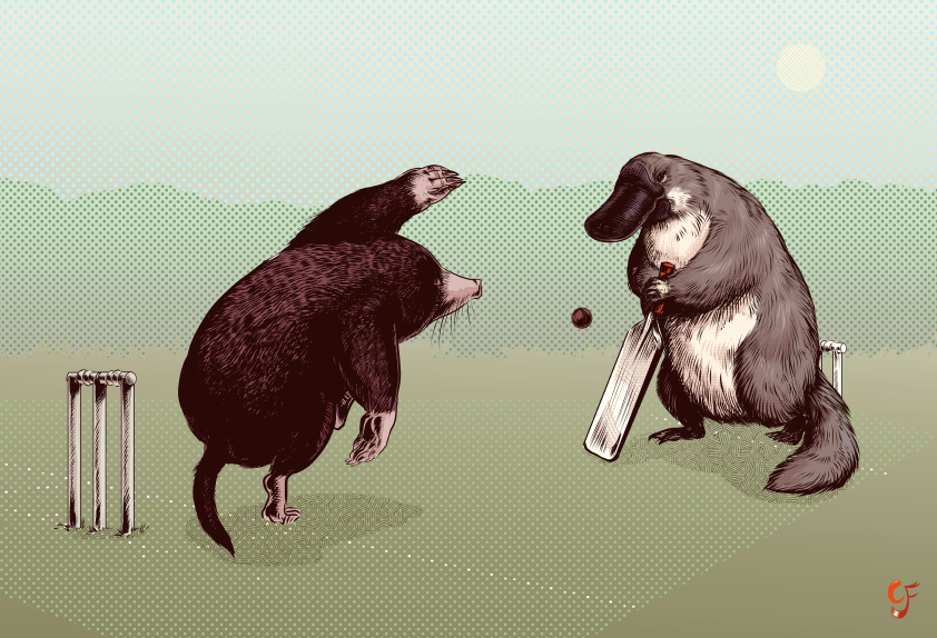 Mole and Platypus Cricket