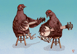 Duelling Grouse