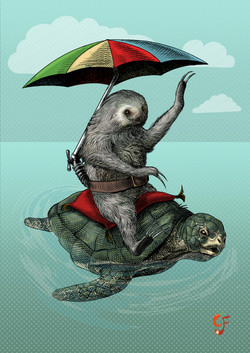 Two toed sloth riding sea turtle