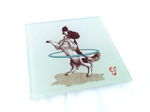 Springer Spaniel Hula Glass Coaster