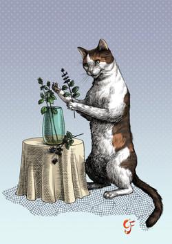Cat Flower arranging