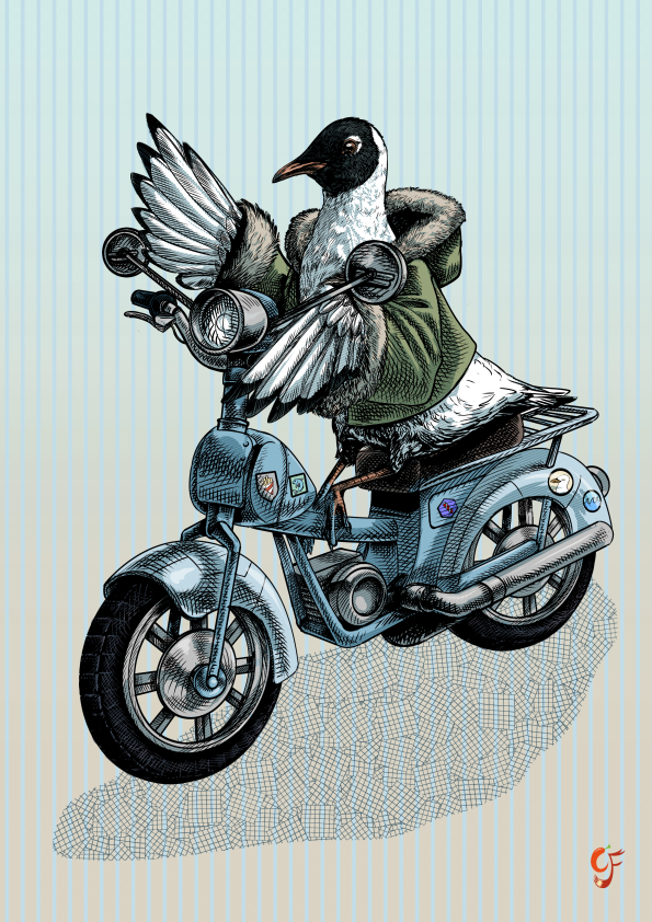 Seagull on Moped