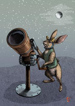 Hare Stargazer