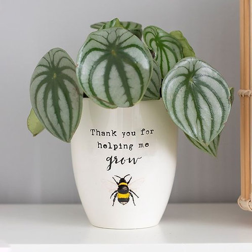 Thanks For Helping Me Grow Ceramic Plant Pot