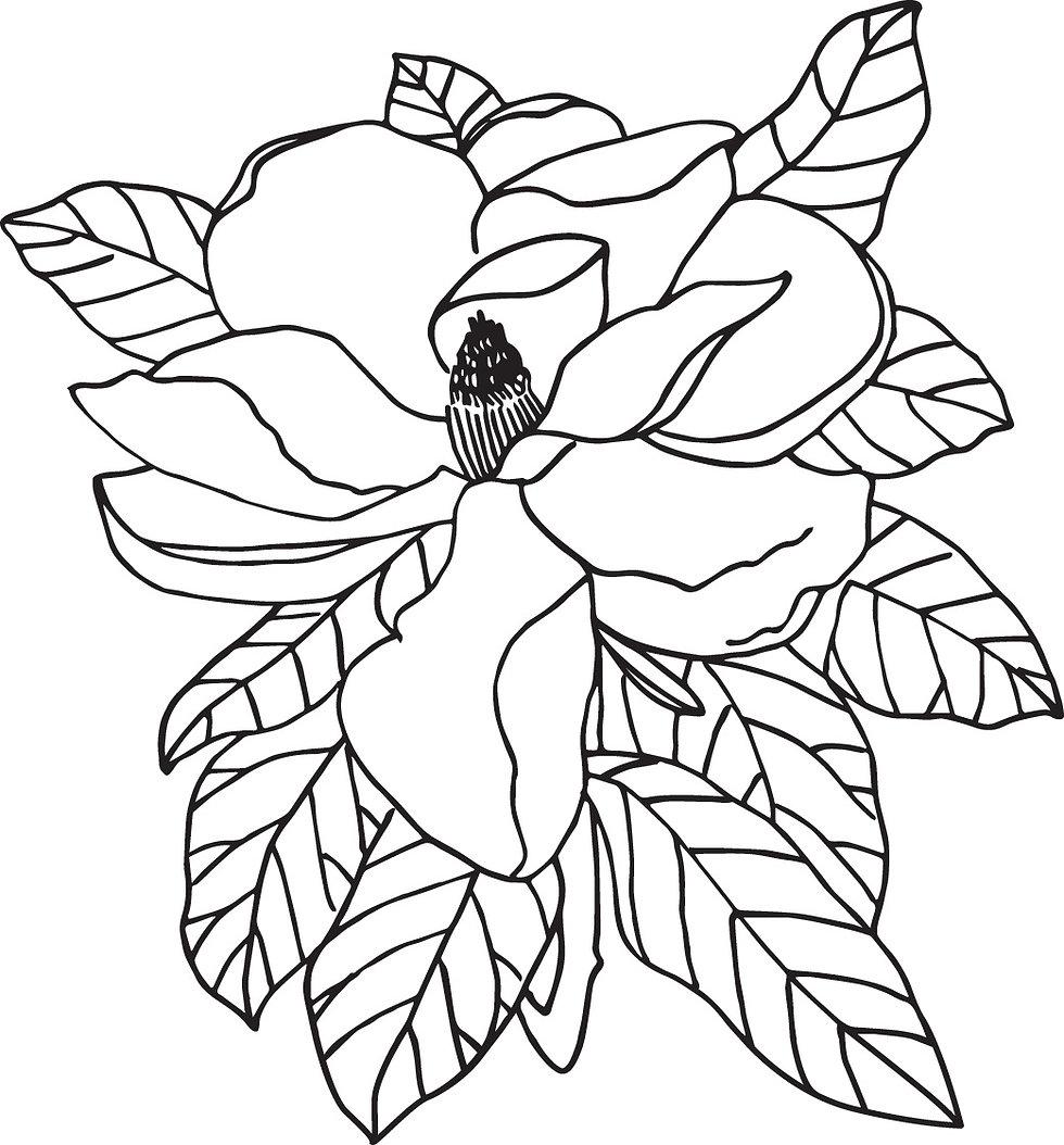 aof_magnolia