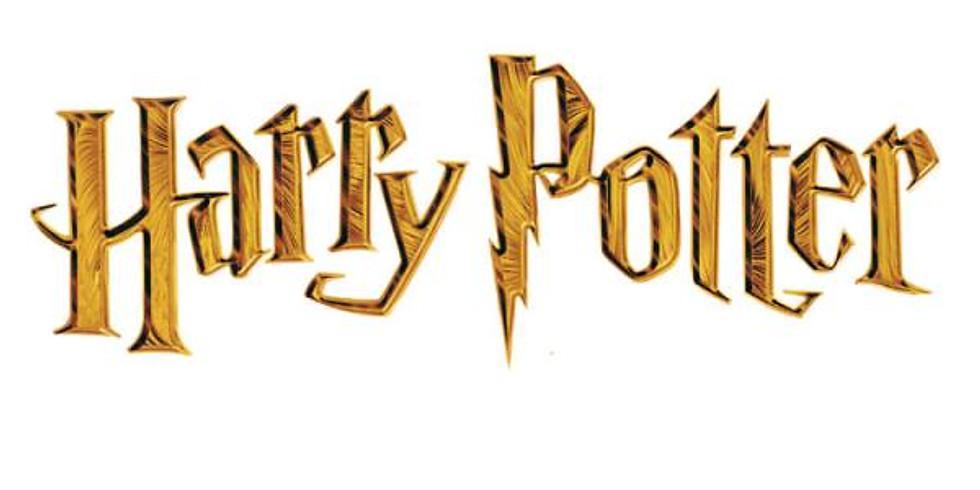Harry Potter - 7-12 years Gosport