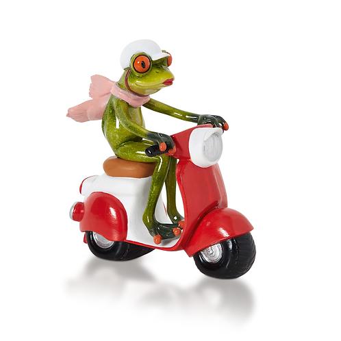 Frosch auf Roller