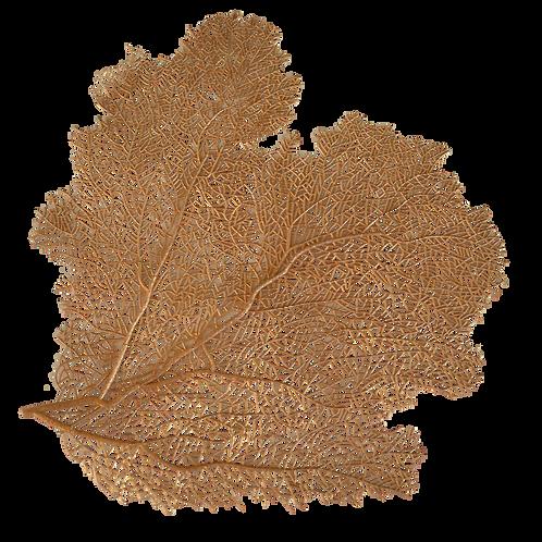Gold Colour Coral PVC Placemat