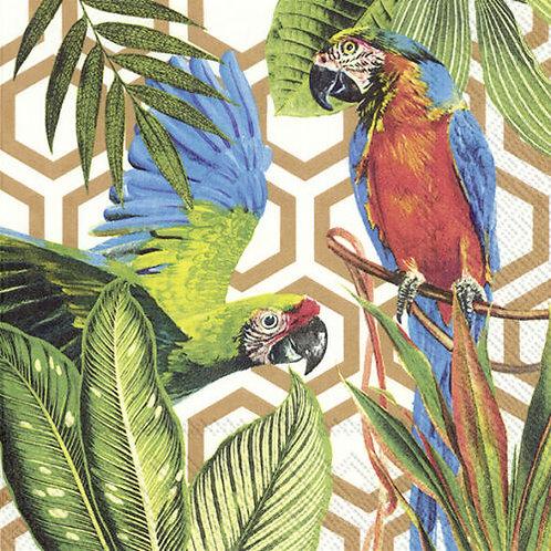 Paper Napkins - Tropical Parrots - Luncheon Size 20 Pack