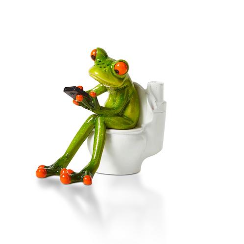 Frosch auf Toilette