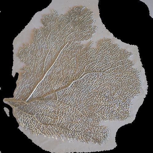 Silver Colour Coral PVC Placemat
