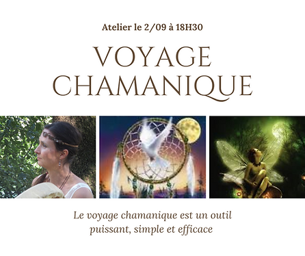 voyage chamanique.png
