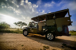 Full Day Open Vehicle Game Drive