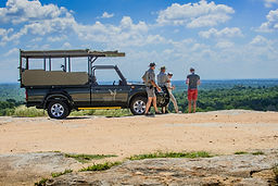 Afternoon Open Vehicle Game Drive