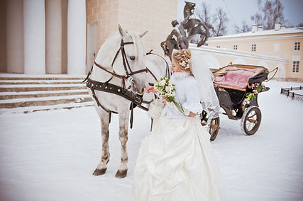 The beautiful bride with a horse in a wi