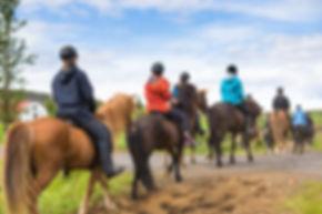 Group of horseback riders ride  in Icela