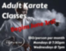 Adult Karate Class.jpg