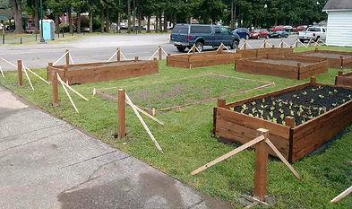 garden start.jpg
