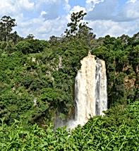 african safari 4294 .png