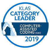 2019-category-leader-Dolbey-computer-ass