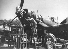 F4U-1 Corsair fighter of No. 16 Squadron Royal New Zealand Air Force