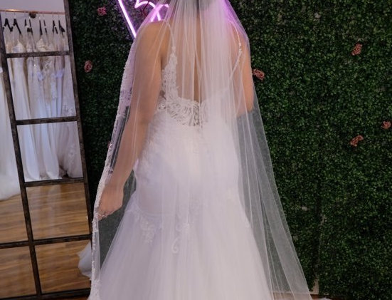 BEADED LACE APPLIQUE VEIL