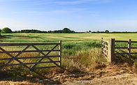 Beverley, Yorkshire, UK. Open farm gate leading into agricultural landscape with grain cro