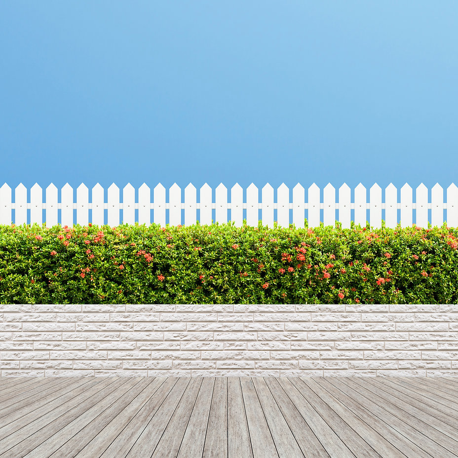 White wooden fence and Green bush wall o